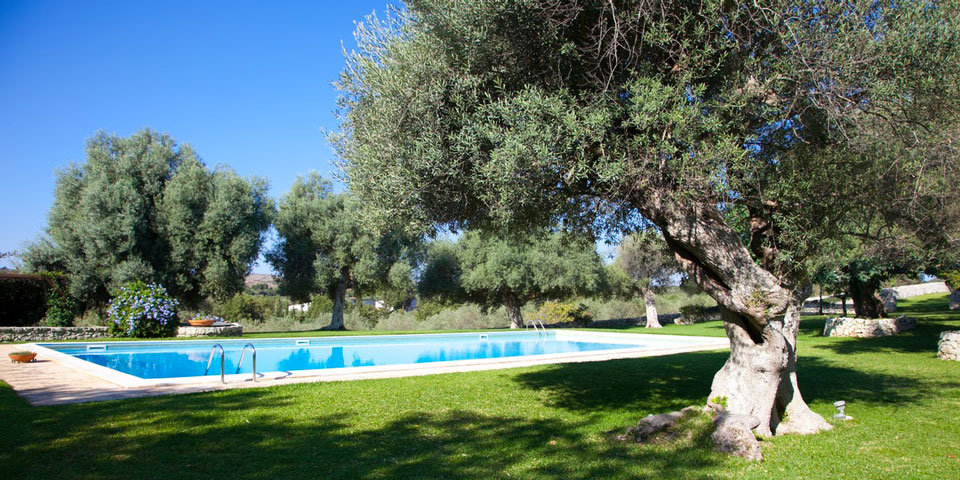 Borgo degli ulivi agriturismo a siracusa - Giardino con ulivi ...